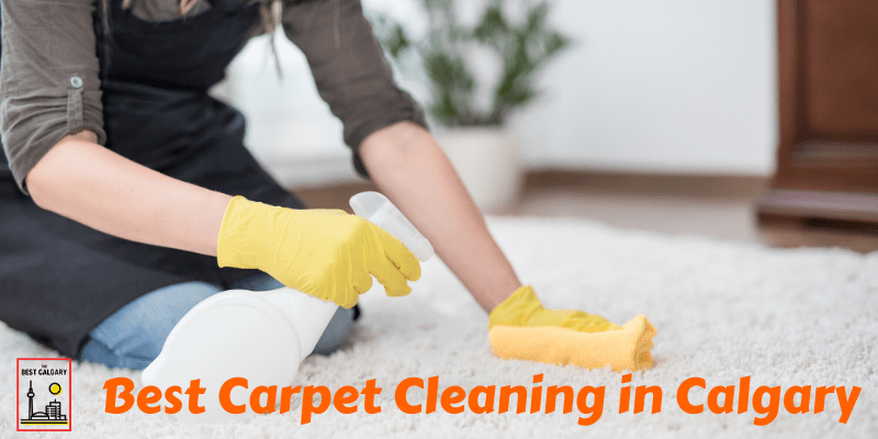 Best Carpet Cleaning Calgary Services