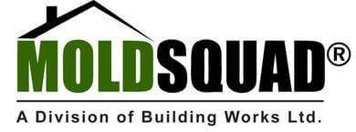 Mold Squad's Logo