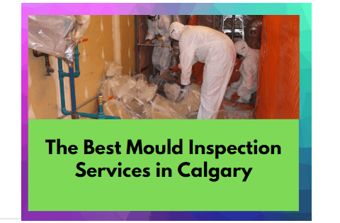 Best Mould Inspection Services in Calgary